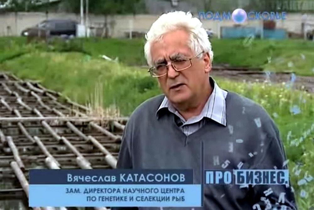 Вячеслав Катасонов - заместитель директора научного центра по генетике и селекции рыб Селекцентр