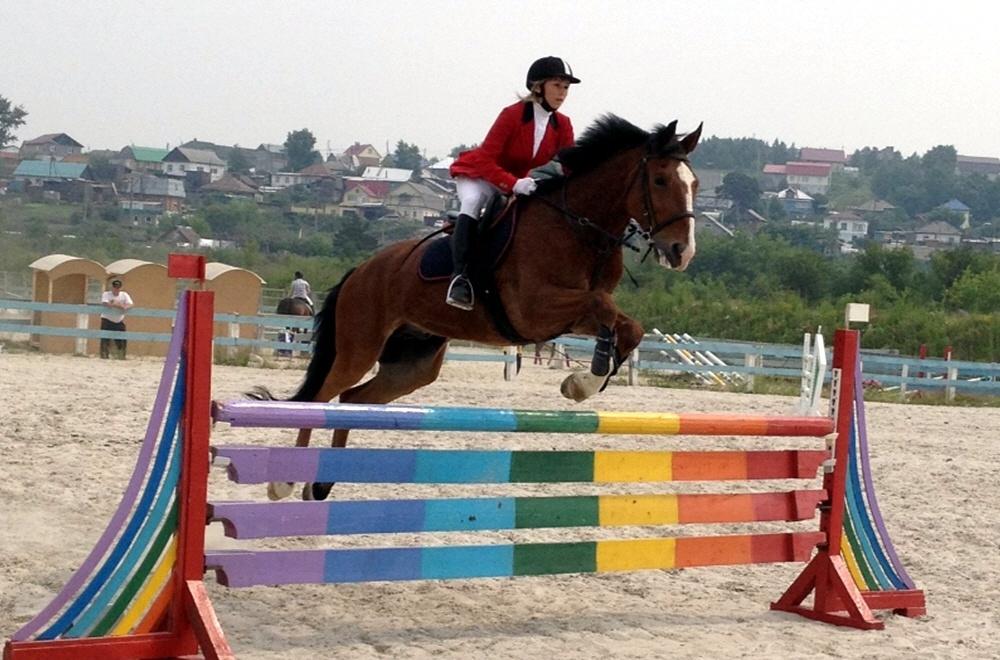 Конный спорт в регионах