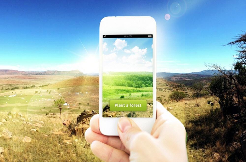 Посадка леса через интернет