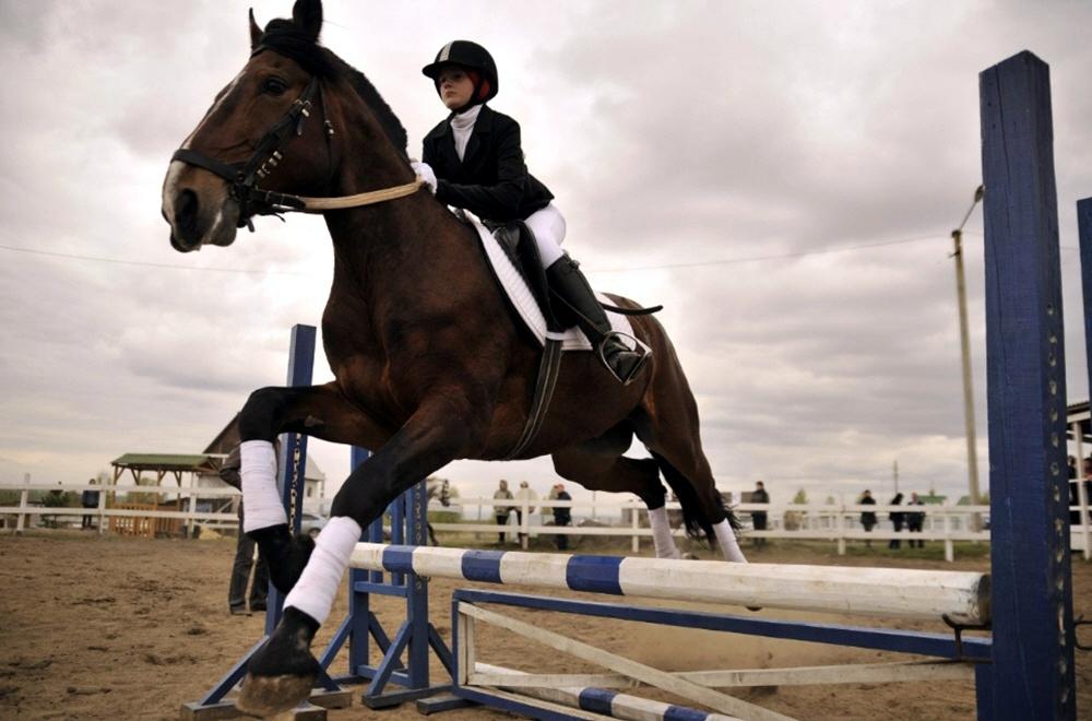 Российский конный спорт